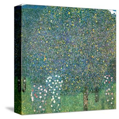 Rosiers sous les Arbres, c.1905 by Gustav Klimt