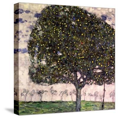 The Apple Tree, 1916