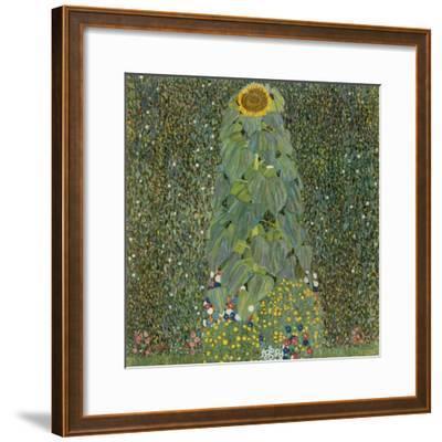 The Sunflower, 1905