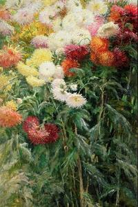 Clump of Chrysanthemums, Garden at Petit Gennevilliers, 1893 by Gustave Caillebotte