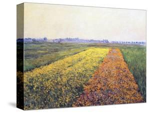 Landscape, 1848 by Gustave Caillebotte