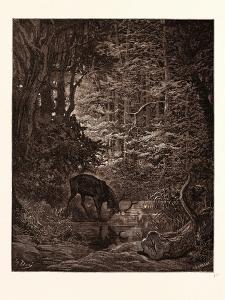 The Stag Viewing Himself in the Stream by Gustave Dore