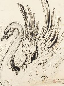 Etude de cygne pour Léda by Gustave Moreau