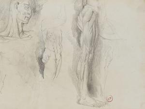 Quatre études d'après un écorché by Gustave Moreau