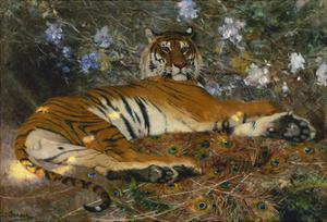 Tiger from Annam; Tigre de l'Annam by Gustave Surand