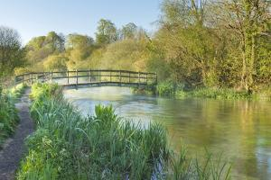 Panoramic View of the River Itchen, Ovington, Hampshire, England, UK, May. 2020Vision Exhibition by Guy Edwardes