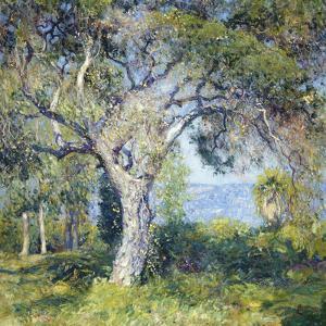 The Oak by Guy Rose