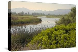 Typical Sardinian Landscape, Water Pond and Mountains in the Background, Costa Degli Oleandri by Guy Thouvenin