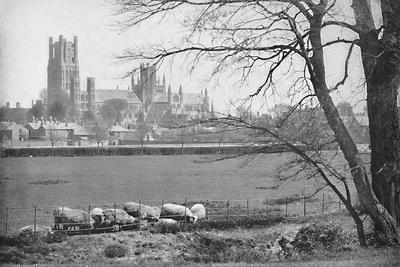 'Ely Cathedral', c1896