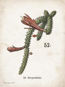 Cacti III by Gwendolyn Babbitt