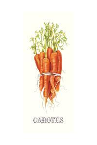 Carotes by Gwendolyn Babbitt