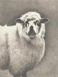 Heirloom Madras Sheep by Gwendolyn Babbitt