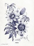 Indigo Fern IV-Gwendolyn Babbitt-Art Print