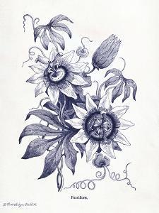 Indigo Botanical I by Gwendolyn Babbitt