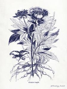 Indigo Botanical III by Gwendolyn Babbitt