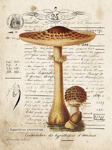 Mushroom I by Gwendolyn Babbitt
