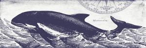 Whale on Cream II by Gwendolyn Babbitt