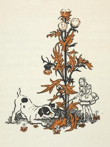 Shrunken Alice and the Puppy by a Giant Thistle. by Gwynedd Hudson