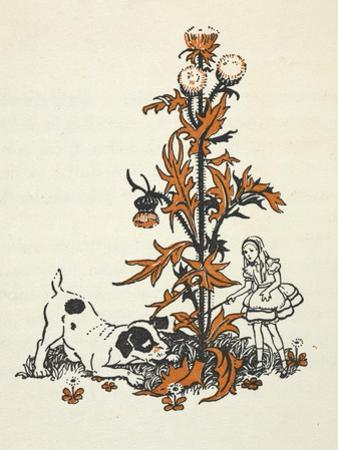 Shrunken Alice and the Puppy by a Giant Thistle.