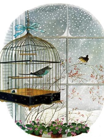 """""""Birdtalk,"""" January 6, 1962"""