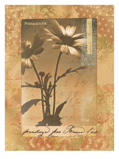 Gypsy Daisies-Hugo Wild-Art Print