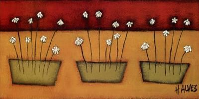 Flores du Campo