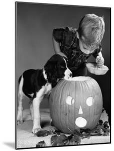 Boy and Jack-O-Lantern by H. Armstrong Roberts