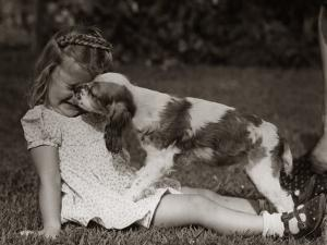 Girl Sitting Outside on Grass, Squinting While a Cocker Spaniel is Licking Her Face by H. Armstrong Roberts