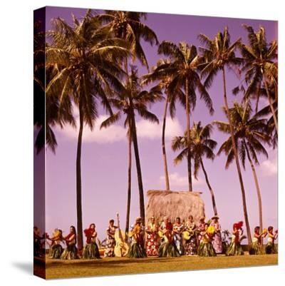 Hula Dancers Dancing Honolulu Hawaii Palm Trees Natives Retro
