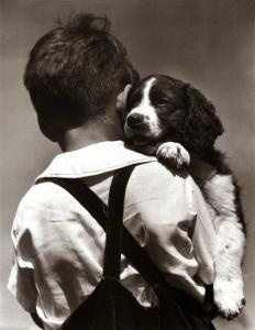 Puppy Love by H^ Armstrong Roberts