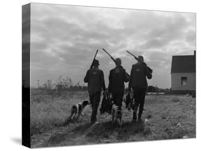 Silhouette Back View of Three Upland Bird Hunters With Shotguns