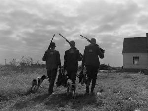Silhouette Back View of Three Upland Bird Hunters With Shotguns by H^ Armstrong Roberts