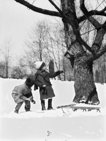 Two Children Pulling Sled, Looking Up Birdhouse in Tree, Winter