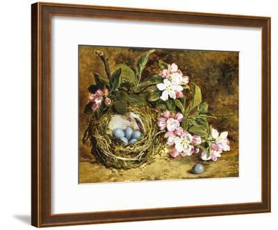 Apple Blossom and a Bird's Nest