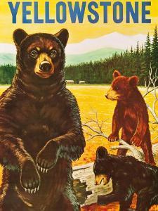 Yellowstone by H. Goodwin