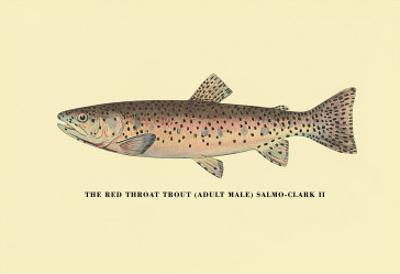 The Red Throat Trout by H.h. Leonard