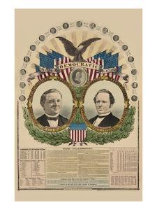 National Democratic Chart 1876: Samuel J. Tilden, President, Thomas A. Hendricks, Vice President by H. H. Lloyd