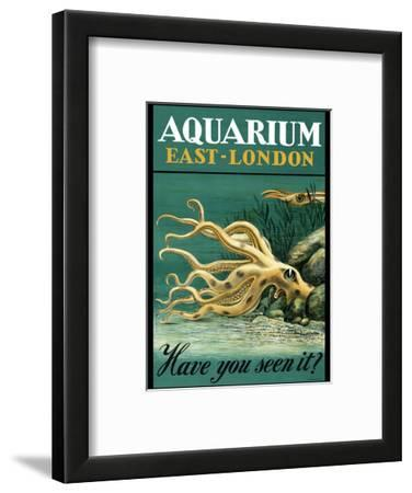 East-London Aquarium - South Africa - Have you seen it? - Octopus