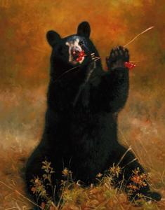 Black Bear with Berries by H. Kendrick