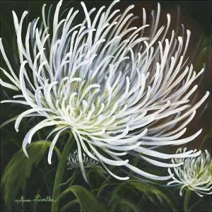 Fleur eclatante by H?l?ne L?veill?e