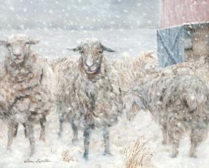 Pure Wool by H?l?ne L?veill?e