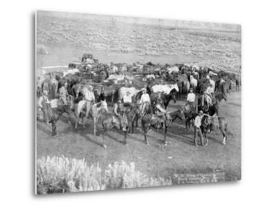 Group of Cowboys and their Horses, Sheridan, Wyoming, C.1890