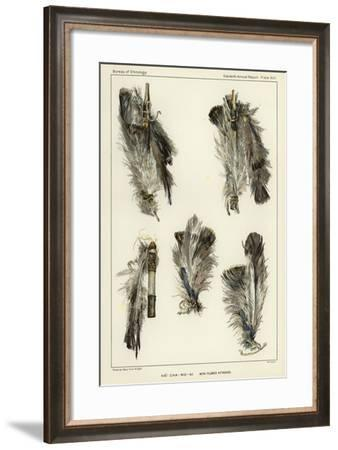 Ha-Cha-Mo-Ni with Plumes Attached--Framed Giclee Print