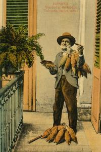 Habana. Vendedor De Tabaco. Tobacco Street Seller, C1910S