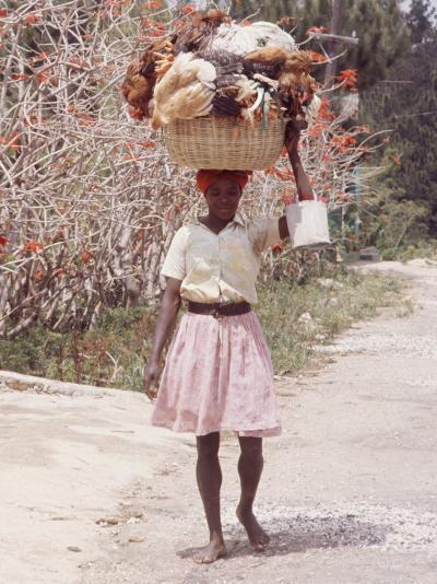 Haitian Woman Carrying Large Basket with Her Market Shopping on Her Head-Lynn Pelham-Photographic Print