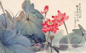 Fragrant Lotus by Haizann Chen