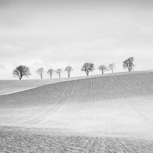 Valley Echo by Hakan Strand