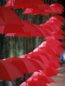 Umbrella Lights, Kunming, China by Hal Gage