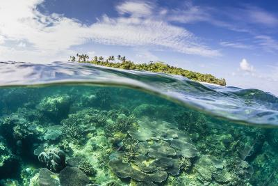 Half Above and Half Below on a Remote Small Islet in the Badas Island Group Off Borneo, Indonesia-Michael Nolan-Photographic Print
