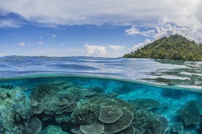 Half Above and Half Below View of Coral Reef at Pulau Setaih Island, Natuna Archipelago, Indonesia-Michael Nolan-Photographic Print